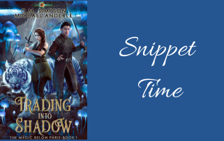 It's Snippet Time! – Trading Into Shadow