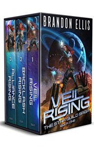 Web Star Guild Saga E-book cover