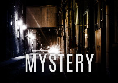 Mystery & Thriller Standalone Series