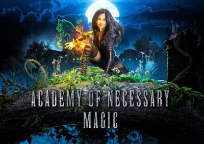 Academy of Necessary Magic