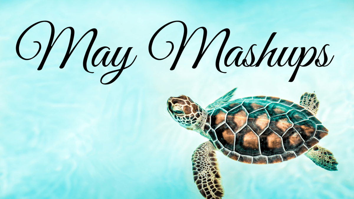 May-Mashup-bookfunnel-promo